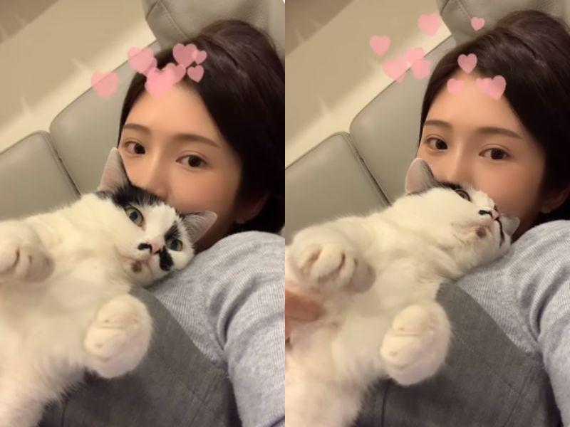 ▲雞排妹分享與愛貓互動影片。(圖/雞排妹臉書)