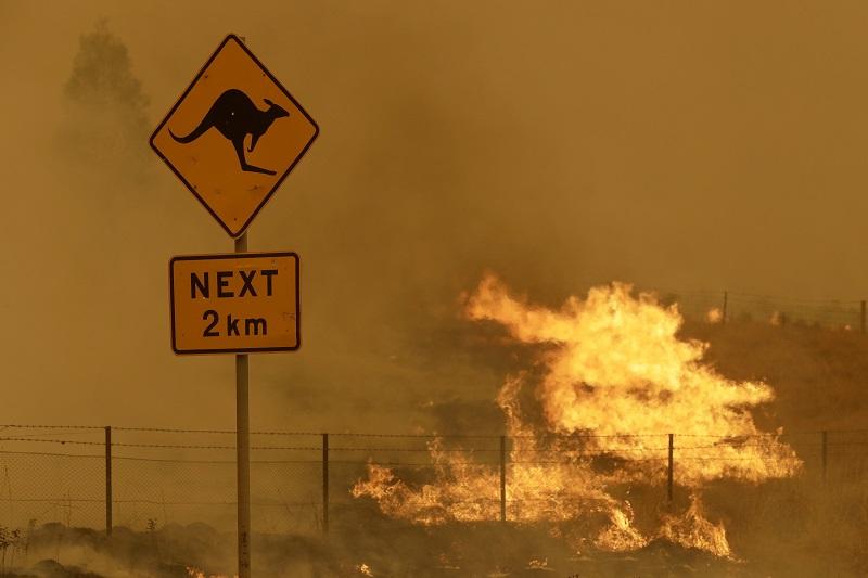 ▲2019年起的澳洲大火延燒數月,科學家們警告未來極端氣候恐怕只會更常見。(圖/美聯社/達志影像)