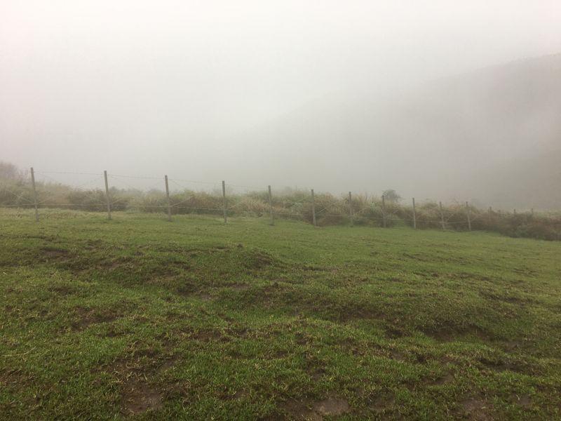 ▲陽明國家公園管理處於擎天崗架設之圍籬。(圖/台北市動保處提供)