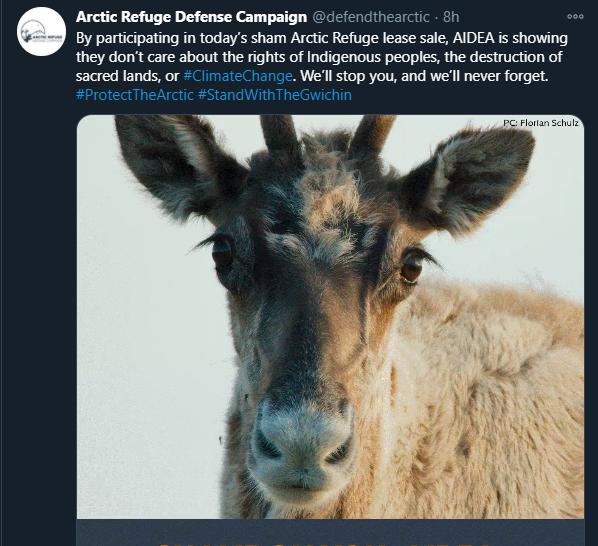 ▲環保團體對於開放北極自然(圖/翻攝Twitter)