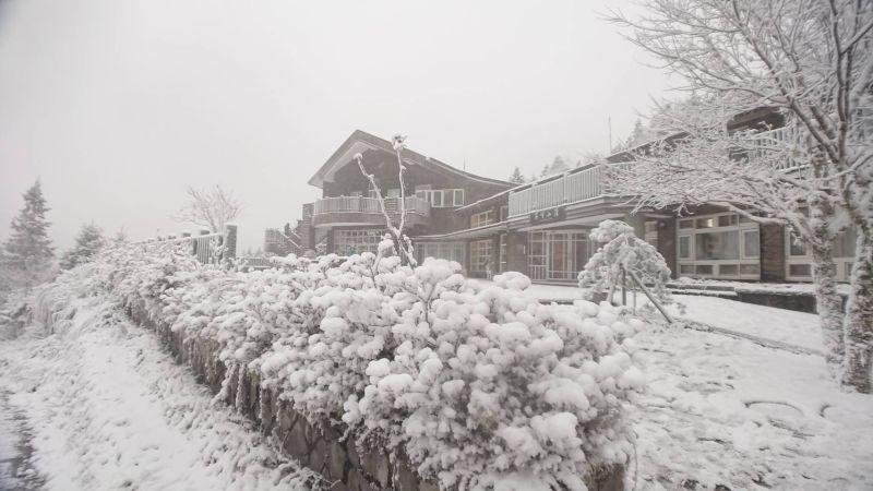 ▲雪景(圖/羅東林管處提供)