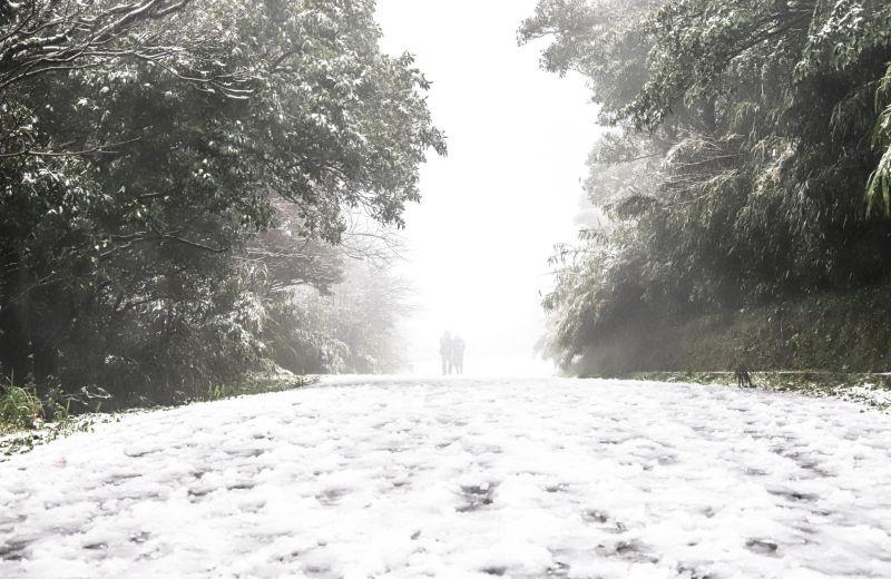 同事翹班追雪!人資知情冷回「1句」 全場驚:真正涼了