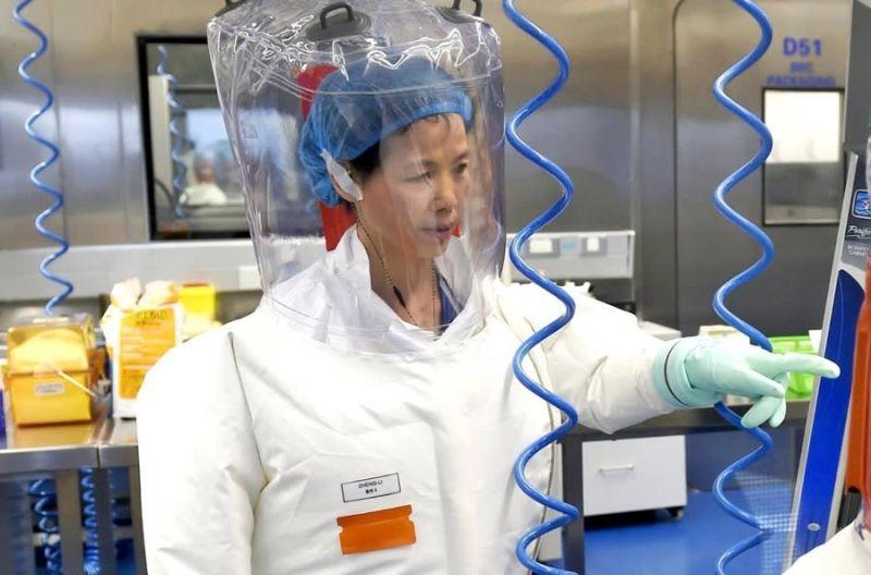 世衛專家甫抵武漢 中國再為病毒所石正麗貼金