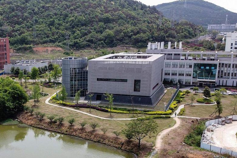 武漢病毒實驗室資料遭大量刪除 英媒憂:中國又粉飾太平