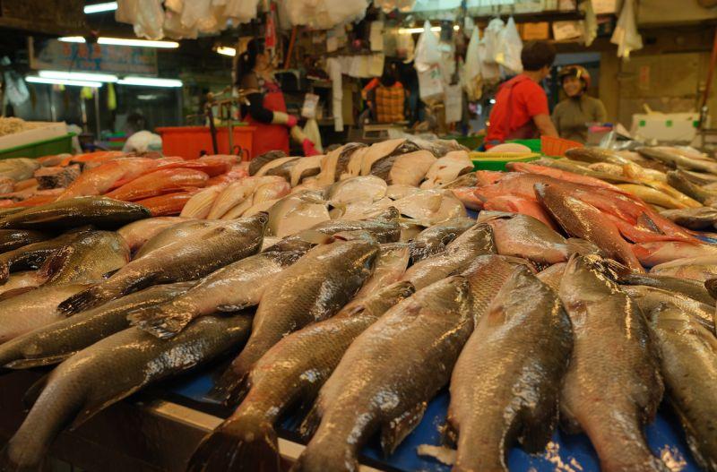 海鮮怎麼買才內行?飯店大廚曝「這3招」:不怕被老闆坑