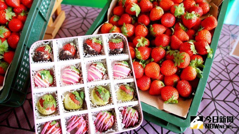 ▲TC巧舖搭配草莓季,推出充滿粉紅戀歌的草莓禮盒。(圖/記者陳美嘉攝,2021.01.19)