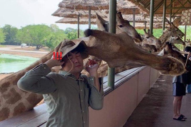 網友與長頸鹿拍照卻被「撞包鄙視」 網笑:長知識了!