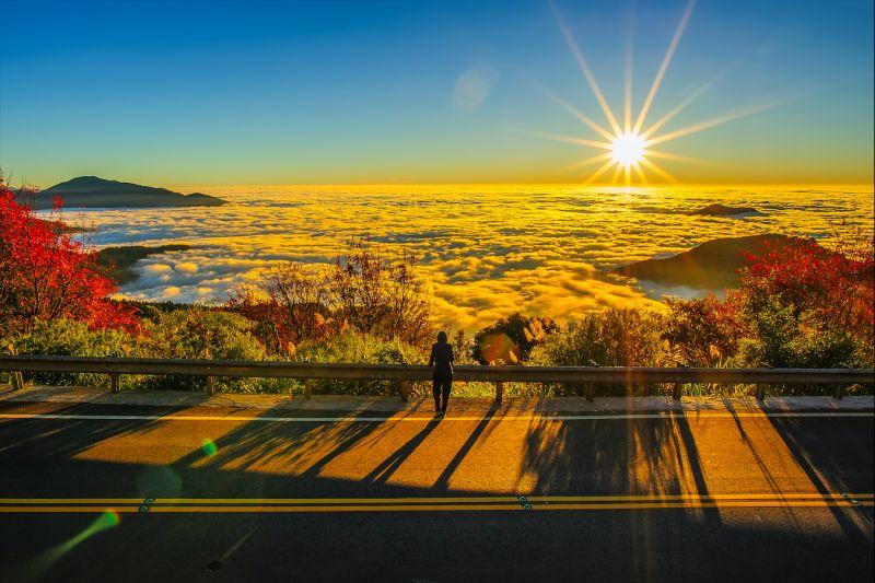 ▲阿里山日出。(圖/取自Shutterstock)