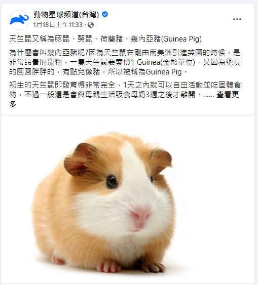 ▲動物星球頻道也在臉書上分享飼主經驗,並呼籲領養代替購買。(圖/翻攝動物星球頻道(台灣)臉書