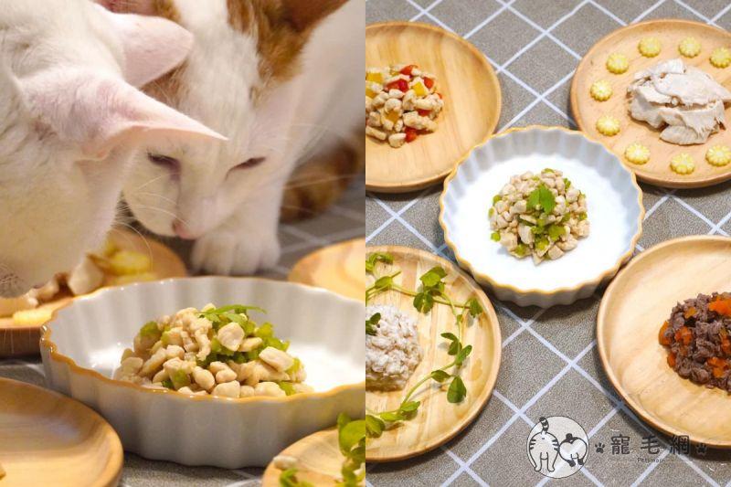 ▲主人是營養師,做出的寵物鮮食令五咪流口水!(圖/IG@咪醬帶小孩mii_chiang授權)