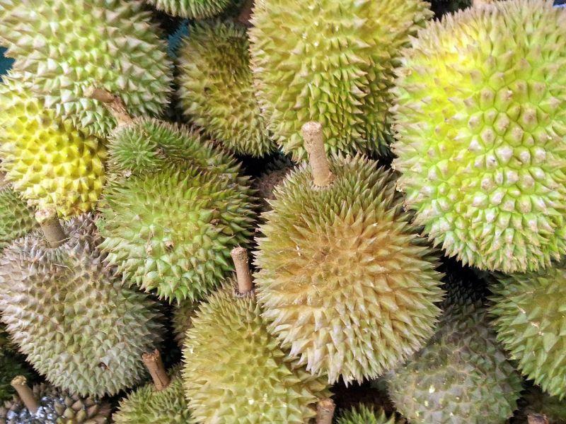 ▲榴蓮在各類水果中,價格算是比較高的了。(示意圖/翻攝自pixabay)
