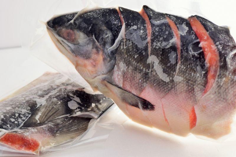▲冷凍魚肉(示意圖/翻攝PhotoAC)