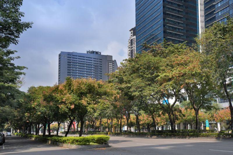 ▲「市政1號院」擁有正七期60米市政路大道首排的黃金門牌,是七期核心區域非常稀缺的精華地點。(圖/品牌提供)