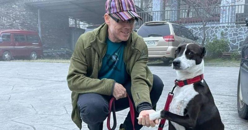 ▲ 米克斯犬被拍到與外國人握手時向主人投以尷尬微笑遭網友瘋傳。(圖/Alloy Wu)提供)