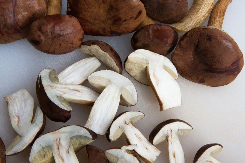 ▲不少婆媽都曾經在煮飯時,忘記先將香菇泡發,讓做飯的節奏順序大亂,對此,臉書粉專《臺北農產》就分享了3種快速泡發香菇的撇步。(示意圖/翻攝自《pixabay》)