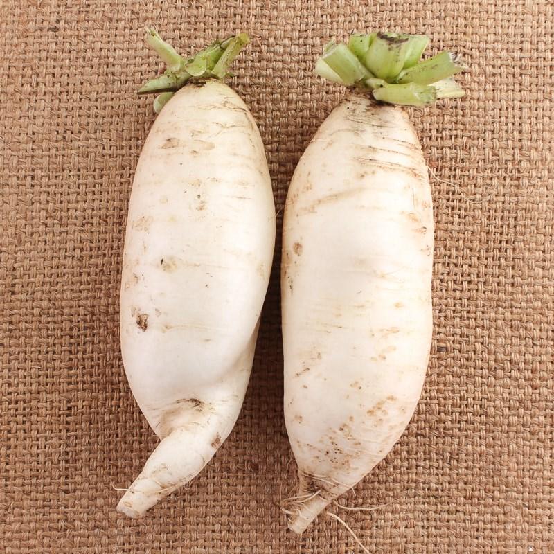 ▲原PO上網查才發現,原來菜頭就是白蘿蔔。(圖/翻攝自《爆廢公社二館》