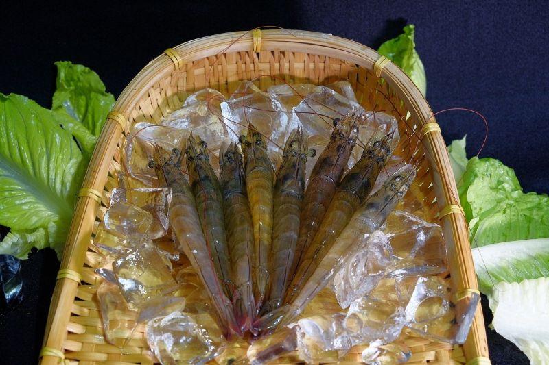 挑蝦子有撇步!「這3種」千萬別買 肉質沒彈性又不營養