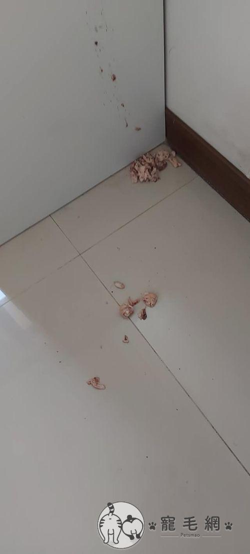 ▲在角落中看到屍骨未寒的烤雞……(圖/網友Li