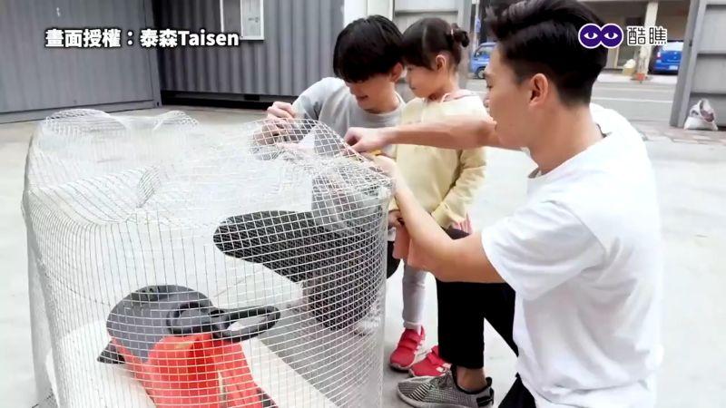 ▲ 外層使用鐵絲網搭天竺鼠的身體支架。(圖/泰森Taisen授權)