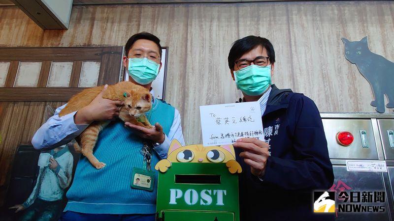 高雄市長陳其邁寄明信片給同是貓奴的總統蔡英文,邀她下次一起來看貓站長「蜜柑」。(圖/記者鄭婷襄攝,2021.02.25)