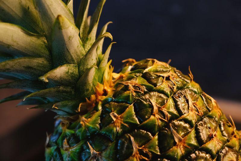 明年產季鳳梨都種了!青農慘曝「關鍵問題」:套路都一樣