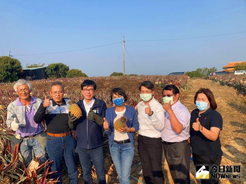 中國無預警暫停進口台灣鳳梨 陳其邁:譴責不友善的作為