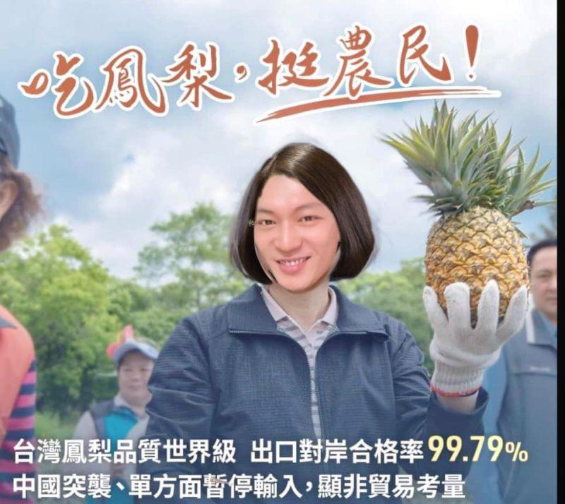 ▲(圖/翻攝自「鳳梨」吳泓逸臉書、IG)
