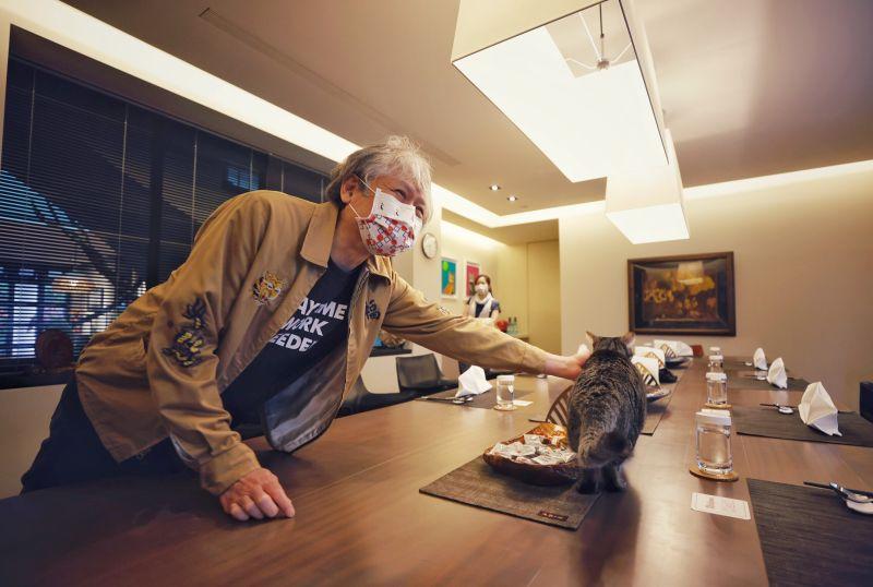 ▲奈良美智8日在總統官邸與蔡英文共進早餐,並和蔡英文的愛貓蔡想想合影。(圖/文化總會提供)