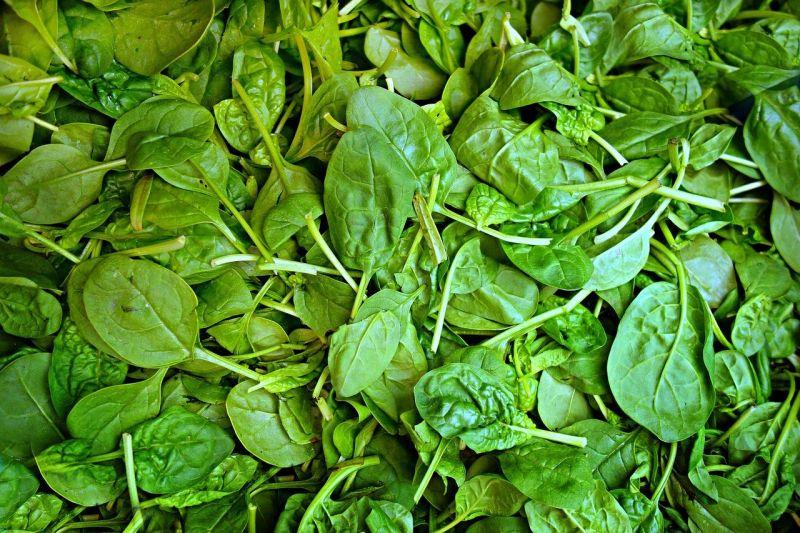 ▲菠菜是我們常常會吃到的蔬菜之一,不過卻常常有苦澀味跑出。(圖/取自pixabay)