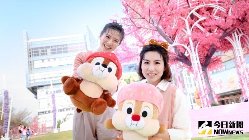 櫻花開了!迪士尼野餐日、公主房、櫻花餐搶粉紅商機