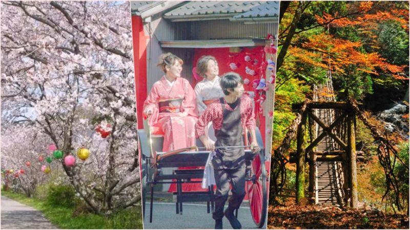 ▲日本四國德島私房景點大公開,連在地人都大推。(圖/公關照片)