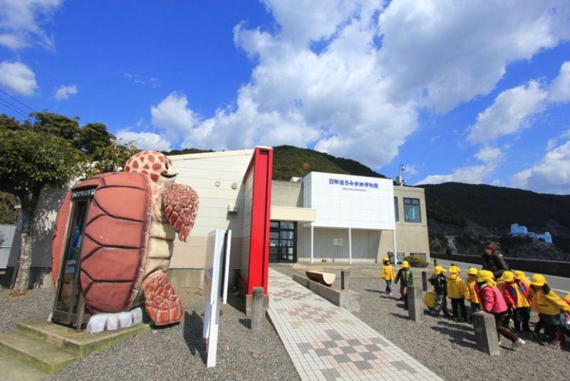 ▲德島縣南部有日本唯一一座海龜專屬博物館,吸引不少遊客慕名前來。(圖/公關照片)