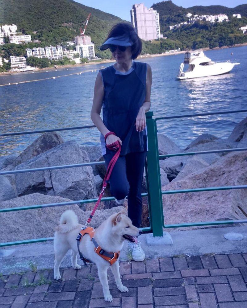 專家認證風水好!關之琳6億豪宅「俯視整個香港龍脈」