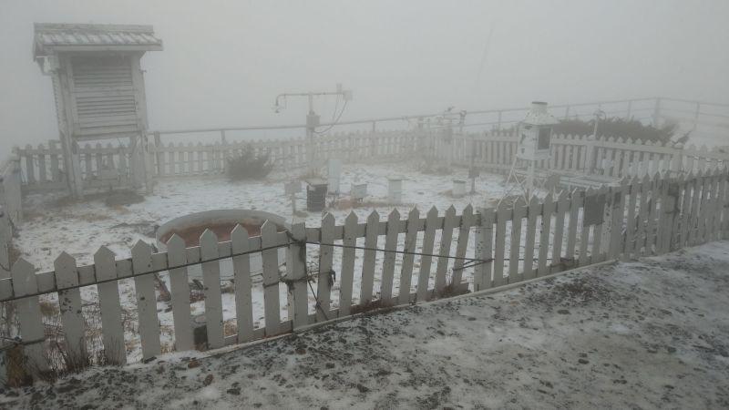 ▲中央氣象局玉山站今(13)日下午1時25分開始下雪,近半小時積雪0.7公分。(圖/中央氣象局提供)