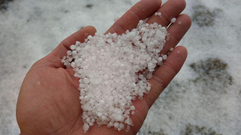 ▲中央氣象局玉山站今(13)日下午1時25分開始一雪,近半小時積雪0.7公分。(圖/中央氣象局提供)