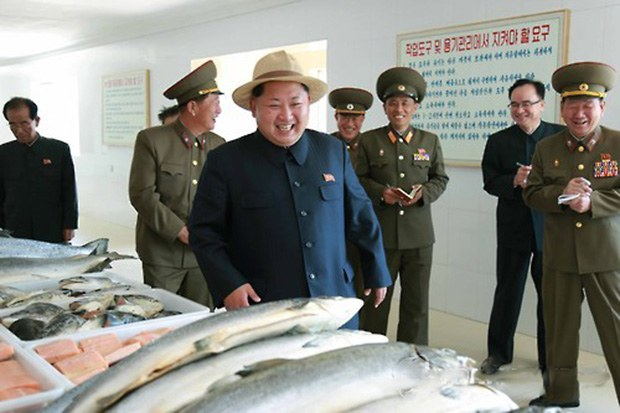 不用改名就有免費鮭魚吃?粉專曝「北韓秘辛」:全民有份