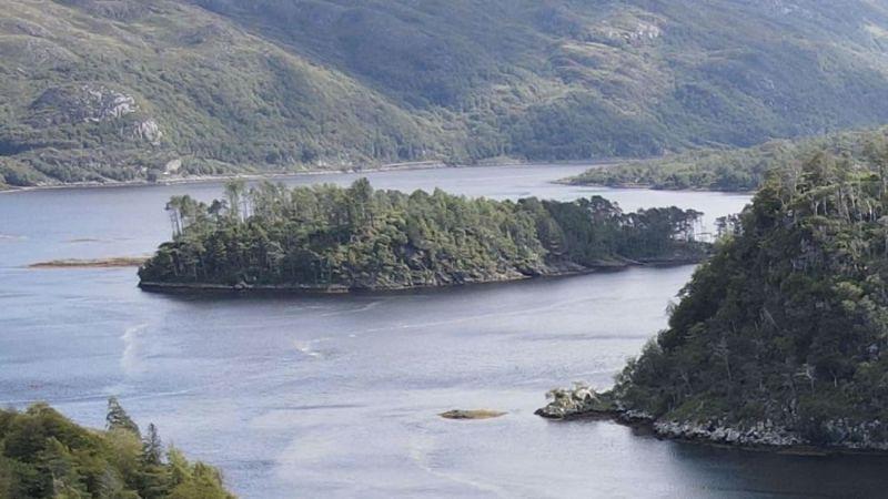 ▲英國一家拍賣行近日在官網拍賣一座位於蘇格蘭的小島,整座島售價8萬英鎊