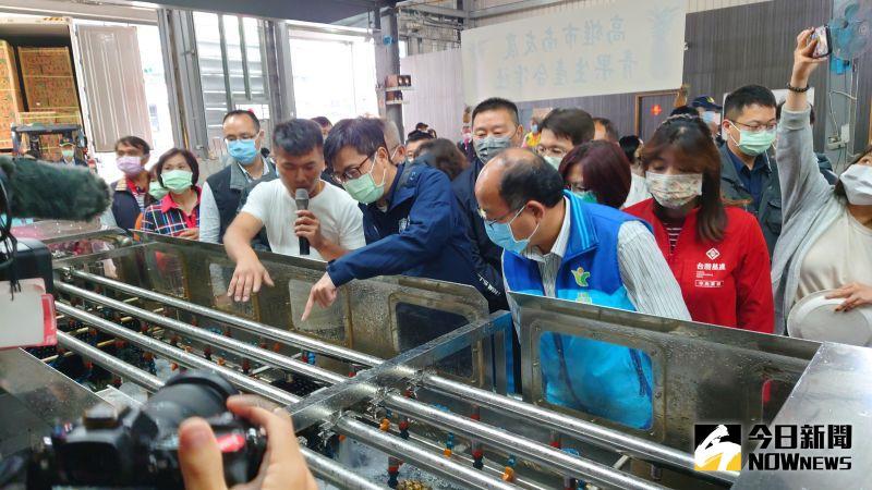 ▲高雄市長陳其邁查看鳳梨場的鳳梨洗選設備。(圖/記者鄭婷襄攝,2021.03.22)