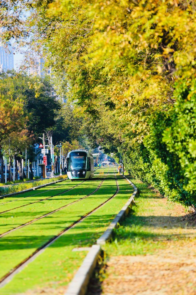 ▲高雄輕軌大南環段110年3月開始收費後,日平均運量比去年同期增加3倍。(圖/高市府捷運局提供)