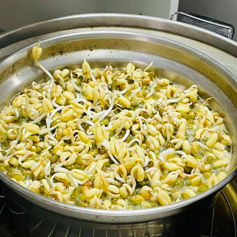 ▲煮綠豆湯忘記按開關,結果綠豆都發芽了。(圖/翻攝自《爆怨2公社》臉書)