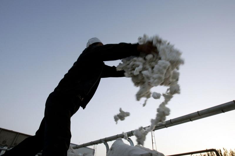 ▲中國新疆棉的議題持續延燒,真相是否被掩蓋?資料照。(圖/美聯社/達志影像)