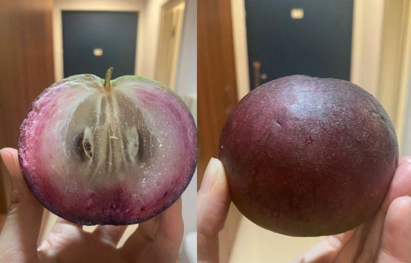 ▲也有網友PO出「紫皮牛奶果」。(圖/翻攝自《Dcard》)