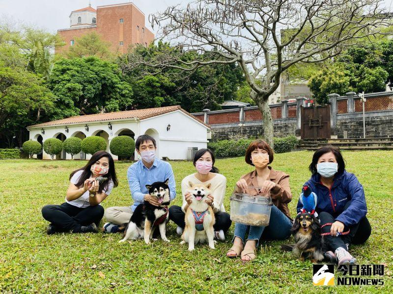 411國際寵物日 淡水小白宮首辦「動物快閃」