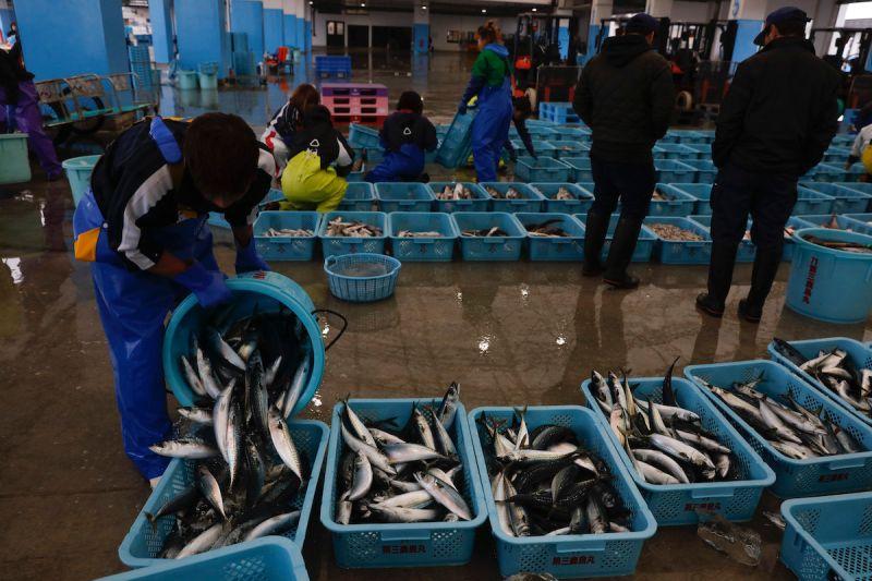 日本 漁業 福島