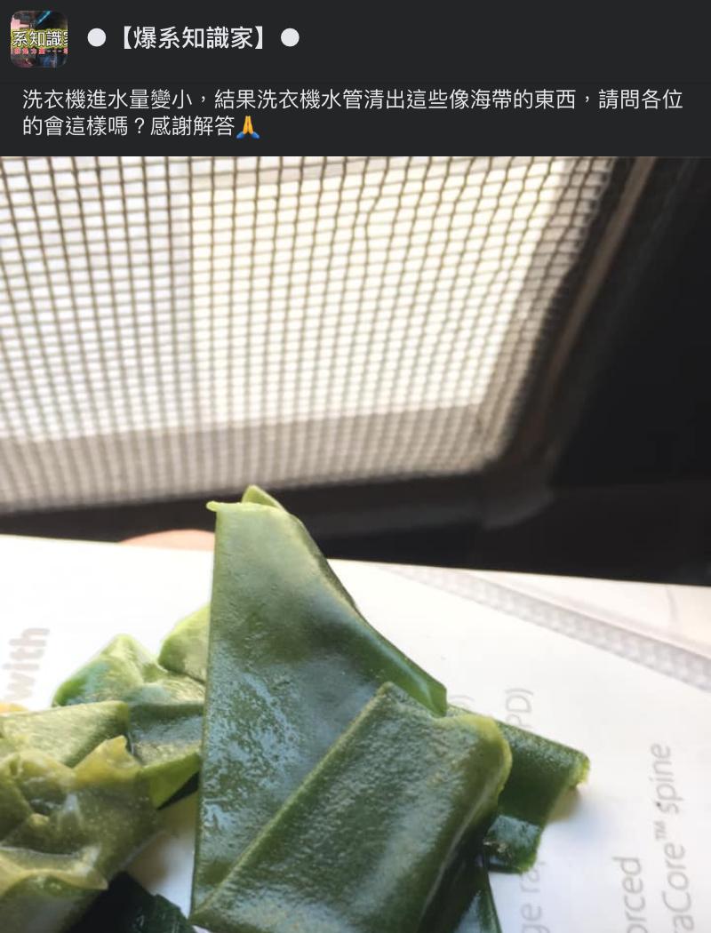 ▲網友從洗衣機水管清出「海帶」,引發熱議。(圖/翻攝自爆系知識家臉書)