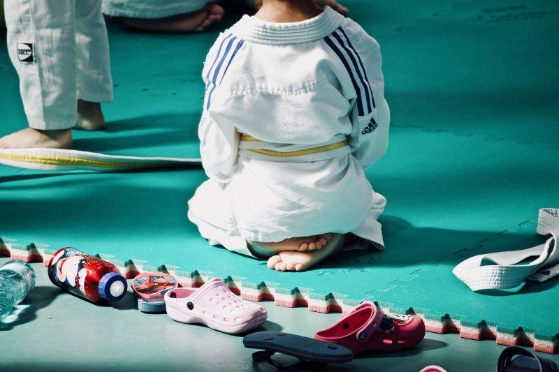 ▲台中一名國小一年級的男童上柔道課遭重摔腦死,檢方聲押無照教練獲准。(圖/取自《Pixabay》)