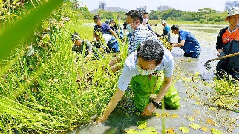 ▲副秘書長郭添貴、青年局局長張以理與志工下水清理生態池。(圖/高市府青年局提供)