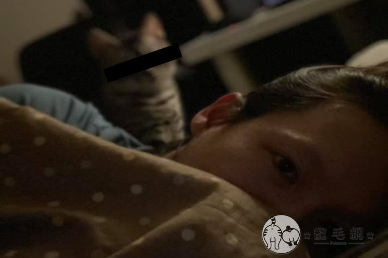 ▲網友林先生被愛貓從被後狂盯20分鐘(圖/網友林同學授權提供)