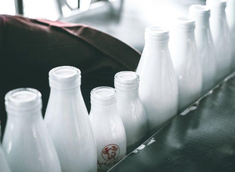 ▲不少人好奇為什麼保久乳不像鮮乳一樣需要冷藏保鮮,難道是因為加了防腐劑嗎,對此營養師高敏敏也給出答案。(示意圖/取自unsplash)