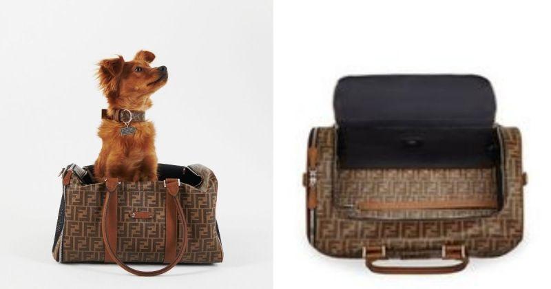 ▲Fendi近期推出一系列的寵物飾品,其中包括手提袋,項圈,夾克,甚至還有與主人同款的皮帶,讓毛小孩和父母能一同享受高級奢華的生活方式。 (圖/Fendi提供)